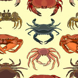 Pattern of vector crab icons Royalty Free Stock Image