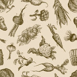 Pattern with vegetables. Vector pattern of a set of the vegetables royalty free stock images
