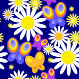 Pattern with vivid butterflies and daisies Royalty Free Stock Images