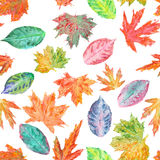 Pattern with watercolor autumn leaves Royalty Free Stock Image