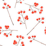 Pattern with watercolor branches with the red berries Stock Photos