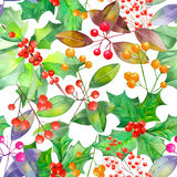Pattern with watercolor branches with the red and orange berries and green leaves Royalty Free Stock Photos