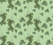 Pattern with watercolor grape leaves Stock Image