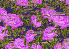 Pattern of watercolor purple roses on wood texture. Rose pattern on wood texture royalty free stock images