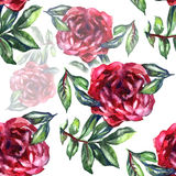 Pattern with watercolor realistic rose, peony and butterflies. Illustration. Stock Image