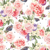 Pattern with watercolor realistic roses, butterflies and figs. Royalty Free Stock Image