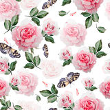 Pattern with watercolor realistic roses, butterflies and plants. Illustration Royalty Free Stock Photo