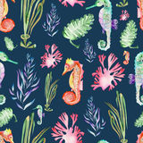 Pattern with watercolor seahorses and seaweed (algae). Seamless pattern with multicolored seahorses and seaweed (algae) painted in watercolor on a dark blue royalty free illustration