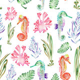 Pattern with watercolor seahorses and seaweed (algae). Seamless pattern with multicolored seahorses and seaweed (algae) painted in watercolor on a white vector illustration