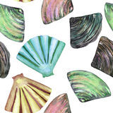 A pattern with the watercolor shells and mussels Royalty Free Stock Image