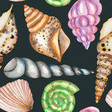 A pattern with the watercolor shells. A seamless pattern with the  shells, painted in a watercolor on a dark blue background Royalty Free Stock Photography