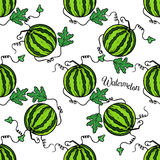 Pattern watermelon stock photos