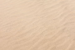 Pattern waves on golden sand beach Stock Photography