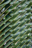 Pattern weave of coconut leaves Stock Images