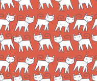 Pattern white cat running in a row Stock Photography
