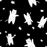 The pattern of white cats with butterflies on a black background Royalty Free Stock Images