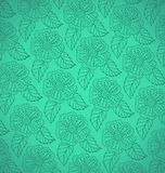 Pattern from white decorative flowers Stock Photography