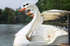 Pattern of white duck boats Stock Photos