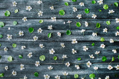 Pattern with white flowers and branches on old retro wooden table background Royalty Free Stock Photo