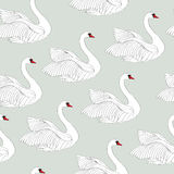 Pattern with white swans. White bird ornamental tile background. White bird ornamental tile pattern. Swimming swan wildlife seamless ornamental background Stock Photo