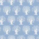 Pattern with a winter trees Royalty Free Stock Photo