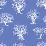Pattern of the winter trees Royalty Free Stock Images