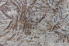 Pattern of wood Stock Photos