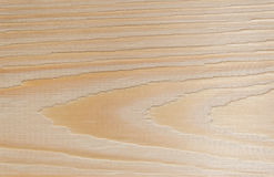 Pattern of the wood. Stock Images