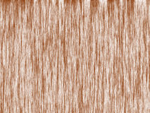 Pattern of wood pulp Stock Images