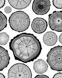Pattern of wood ring. Seamless pattern of wood ring,  illustration Stock Photo