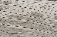 Pattern of wood texture Royalty Free Stock Photography