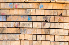 Pattern from wooden panels Stock Image