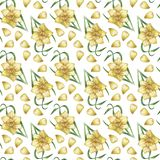 A pattern with a yellow daffodil Stock Photo