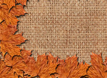 Pattern with yellow leaves on the sacking Royalty Free Stock Photo