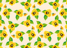 Pattern yellow pansies Royalty Free Stock Photo