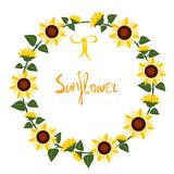 Yellow sunflowers on white background vector illustration