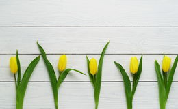Pattern of yellow tulips. On a white wooden background Stock Photography