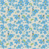 Pattern7. Abstract seamless pattern with small blue flowers Royalty Free Stock Image