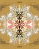 Patternale Imagen de archivo libre de regalías