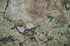 Patterned beautiful shabby stone floor with marble 7 stock photography