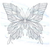 Patterned butterfly on the grunge background. Ornate moth. Papillon. Tattoo design. It may be used for design of a t-shirt, bag, postcard, a poster and so on Royalty Free Stock Photography