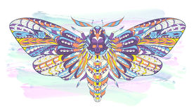Patterned butterfly on the grunge background. Stock Image
