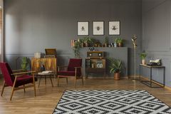 Patterned carpet in grey living room interior with dark red wood royalty free stock photography