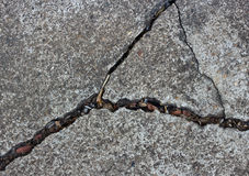 Patterned crack concrete. Royalty Free Stock Photos