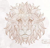 Patterned head of the lion Stock Image