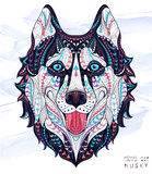 Patterned Head Of The Dog Husky Royalty Free Stock Image