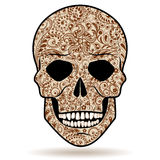 Patterned human skull Royalty Free Stock Image