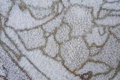 Patterned Ice Surface royalty free stock image