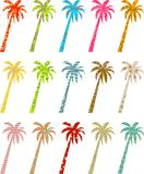 Patterned palms Stock Photography