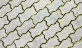 Patterned paving tiles Royalty Free Stock Photography